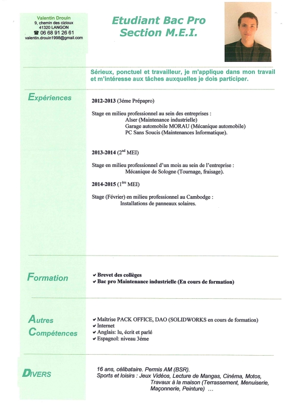exemple cv bac pro commerce