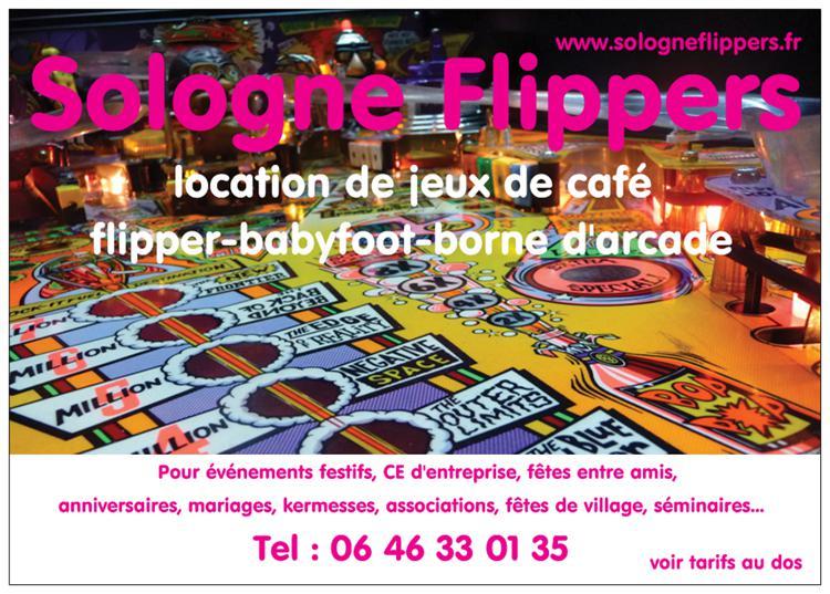 Sologne Flippers location réparation flippers jeux de café